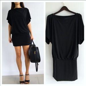 NWT WHBM dolman sleeve drop waist dress